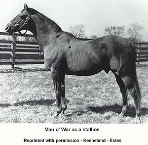 Man O War The Greatest Thoroughbred Racehorse